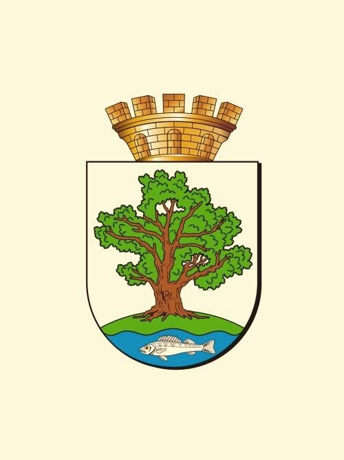 Ладушкинский городской округ